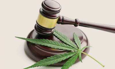 Multiple CBD Brands Receive FTC Fines for Medical Claims