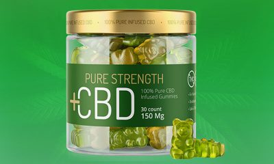 Pure Strength CBD Gummies: 100% Pure CBD-Infused Edibles?