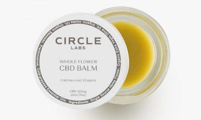 Circle Labs CBD: Legit Hemp Pain Relief Balm That Works?